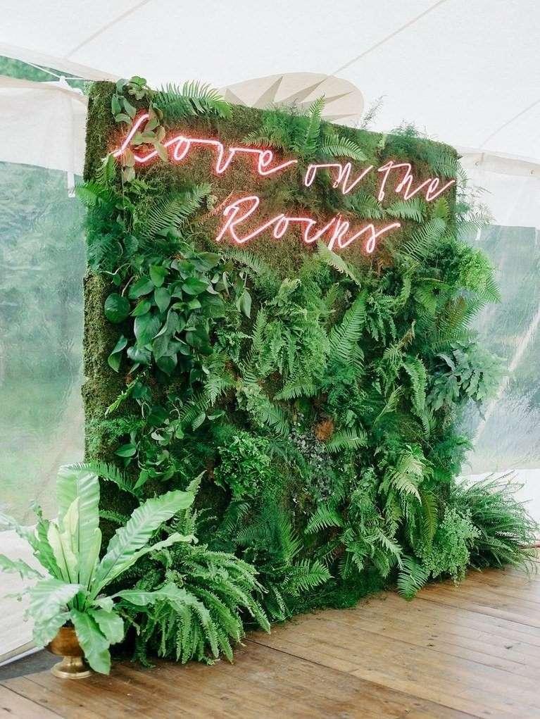 Neon Yazı Detaylı Yeşil Bitki Fonlu Fotoğraf Köşesi