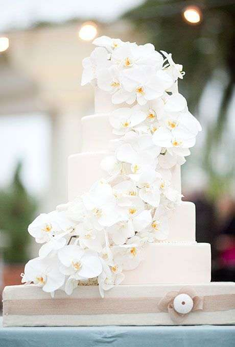 Orkidelerle Süslenmiş Beyaz Pasta