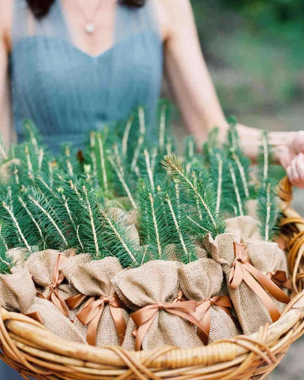 Çuval Kese İçinde Çam Ağacı Fideleri Düğün Hediyeliği