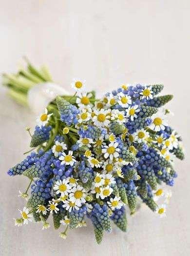 Mavi Bitkilerden ve Papatyalardan Gelin Buketi